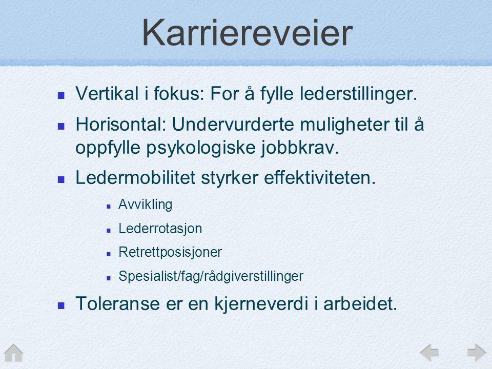 Karriereveier Vertikal i fokus: For å fylle lederstillinger.