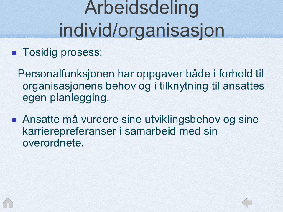 Arbeidsdeling individ/organisasjon