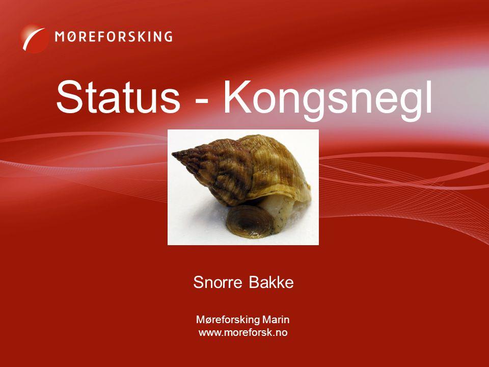 Snorre Bakke Møreforsking Marin www.moreforsk.no