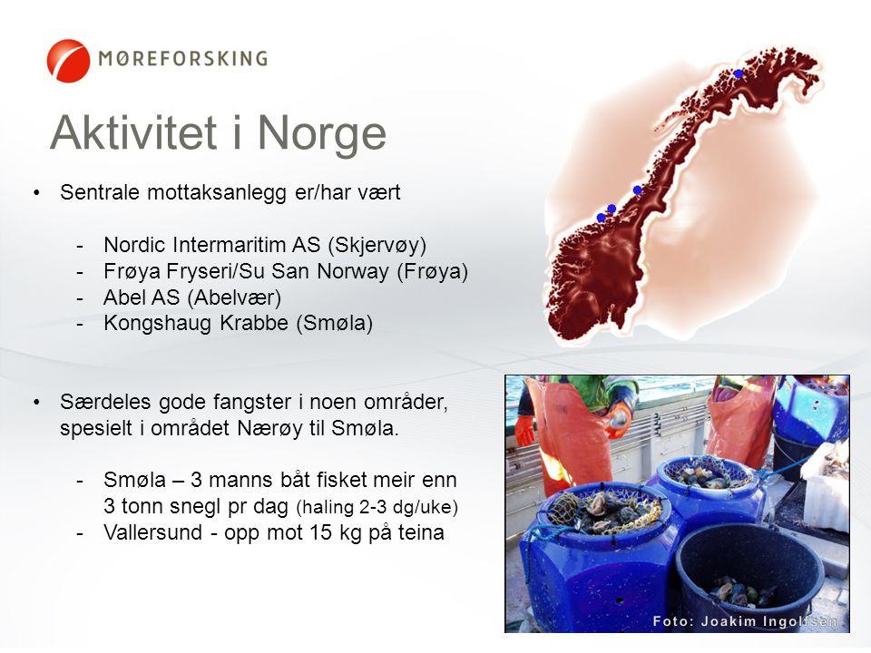 Foto: Joakim Ingolfsen