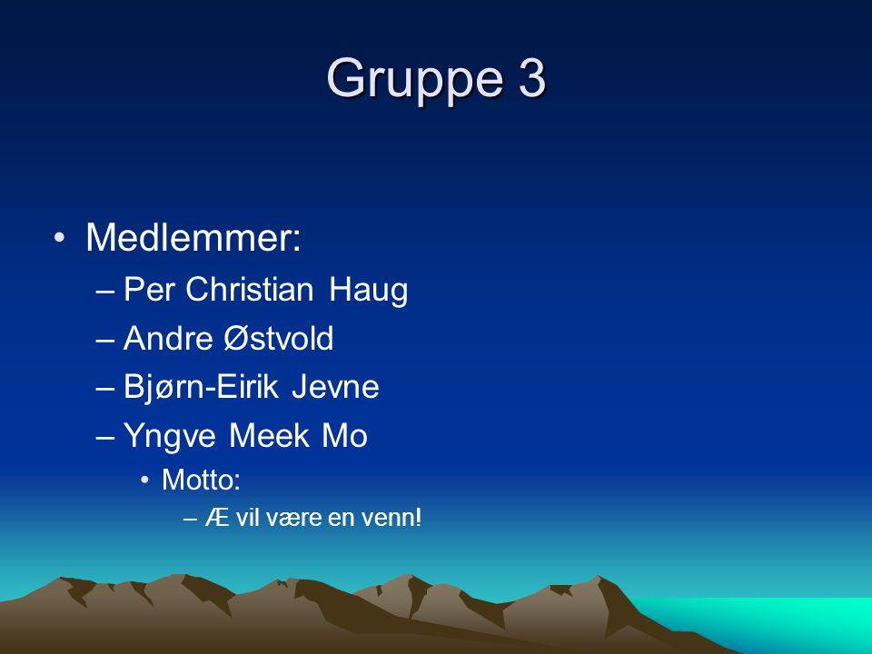 Gruppe 3 Medlemmer: Per Christian Haug Andre Østvold Bjørn-Eirik Jevne