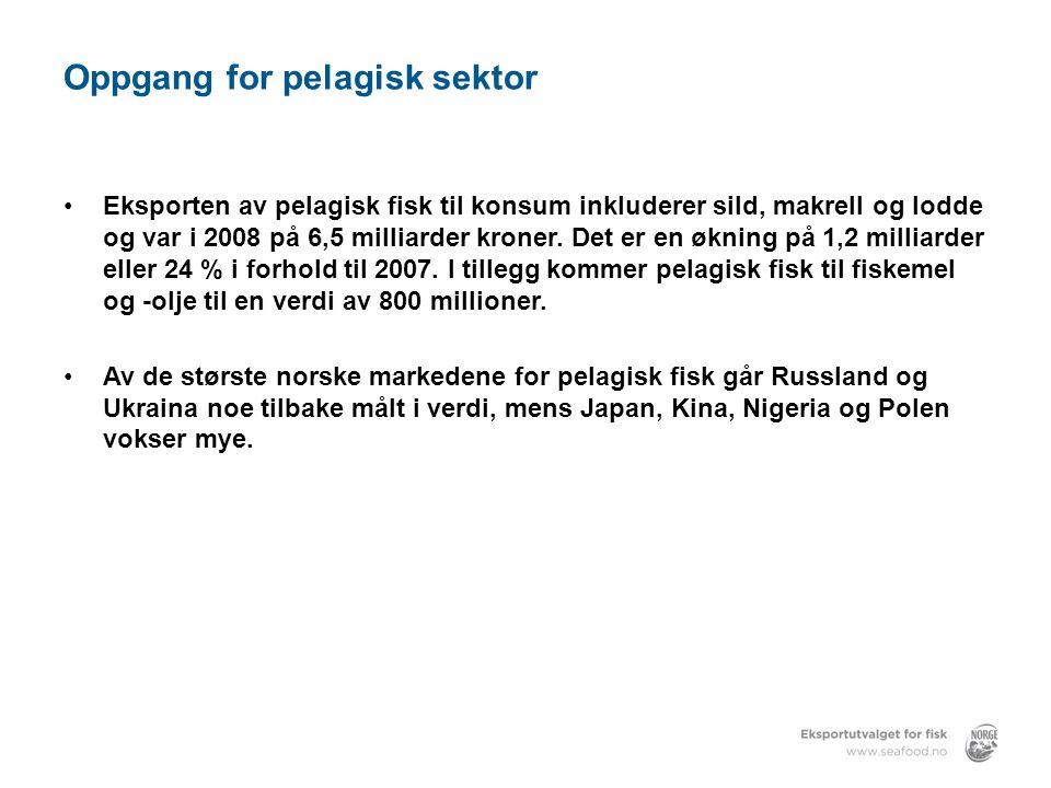 Oppgang for pelagisk sektor