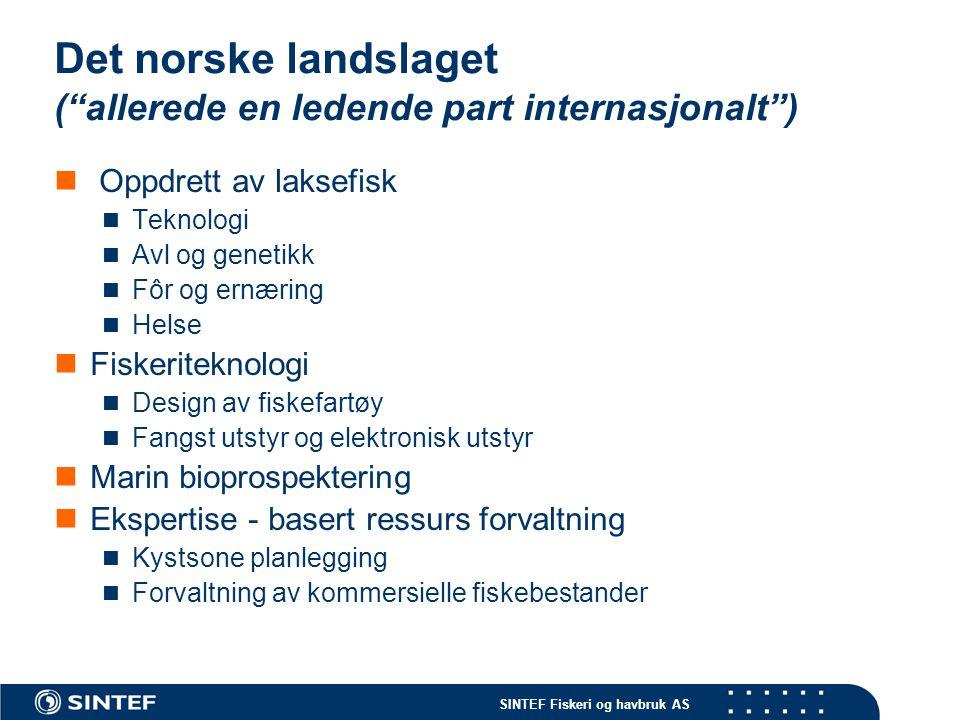 Det norske landslaget ( allerede en ledende part internasjonalt )