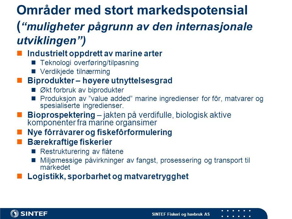 Områder med stort markedspotensial ( muligheter pågrunn av den internasjonale utviklingen )