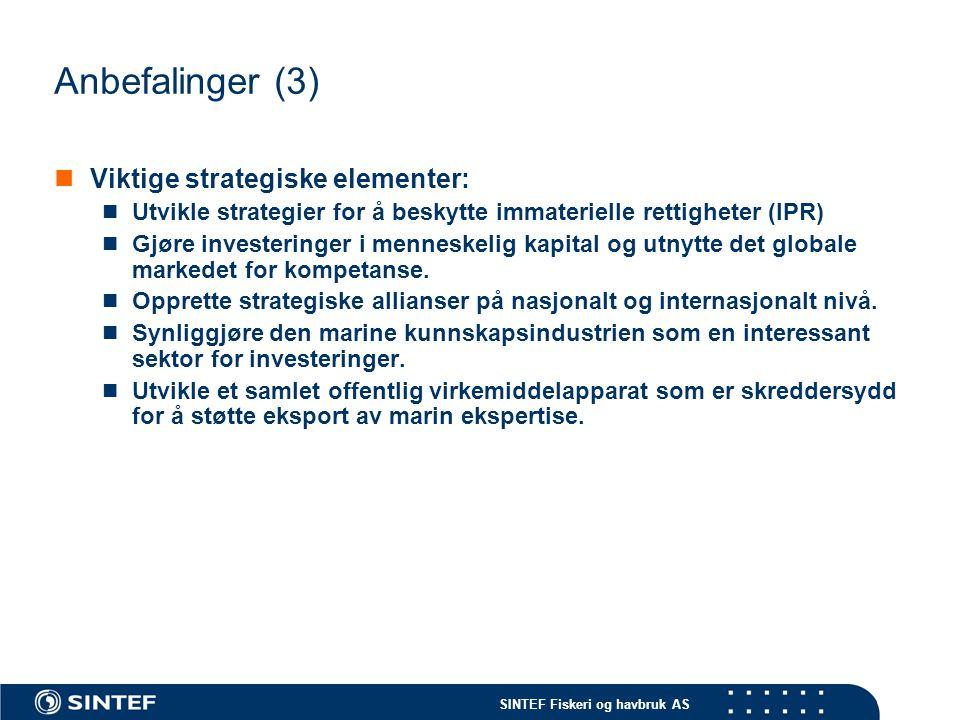 Anbefalinger (3) Viktige strategiske elementer:
