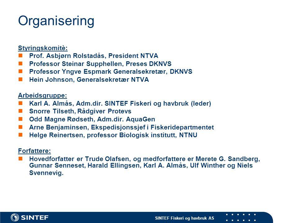 Organisering Styringskomitè: Prof. Asbjørn Rolstadås, President NTVA