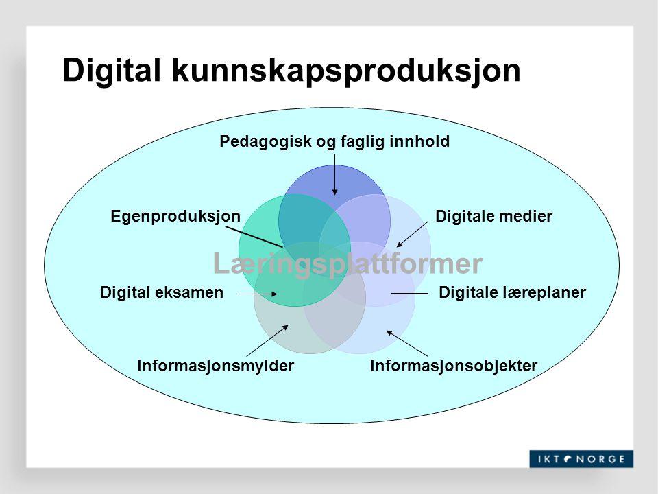 Digital kunnskapsproduksjon