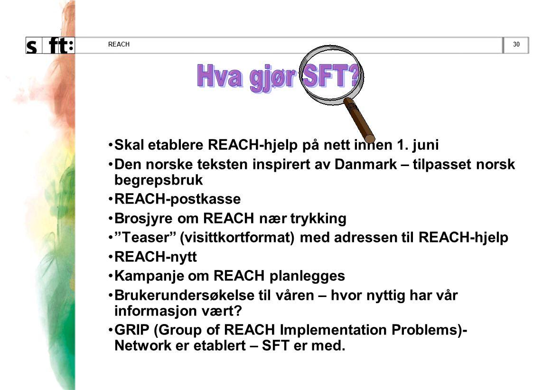 Hva gjør SFT Skal etablere REACH-hjelp på nett innen 1. juni