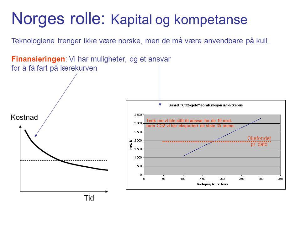 Norges rolle: Kapital og kompetanse