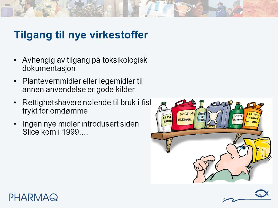 Norge har flest lusemidler tilgjengelig – viktig å fortsette å bruke dem riktig