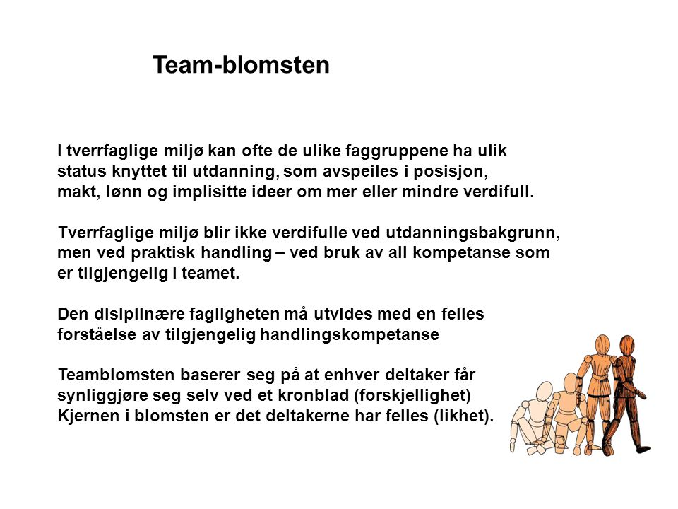 Team-blomsten I tverrfaglige miljø kan ofte de ulike faggruppene ha ulik. status knyttet til utdanning, som avspeiles i posisjon,