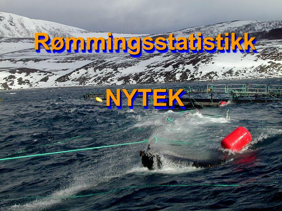 Rømmingsstatistikk NYTEK