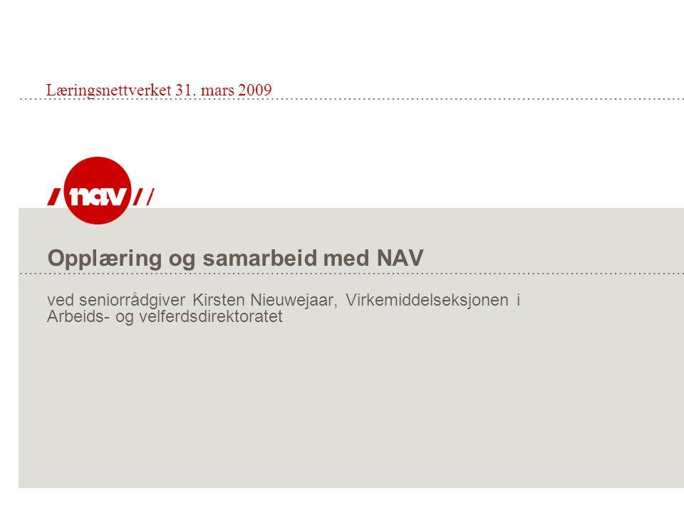 Læringsnettverket 31. mars 2009