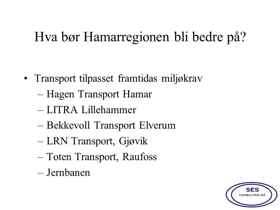 Hva bør Hamarregionen bli bedre på