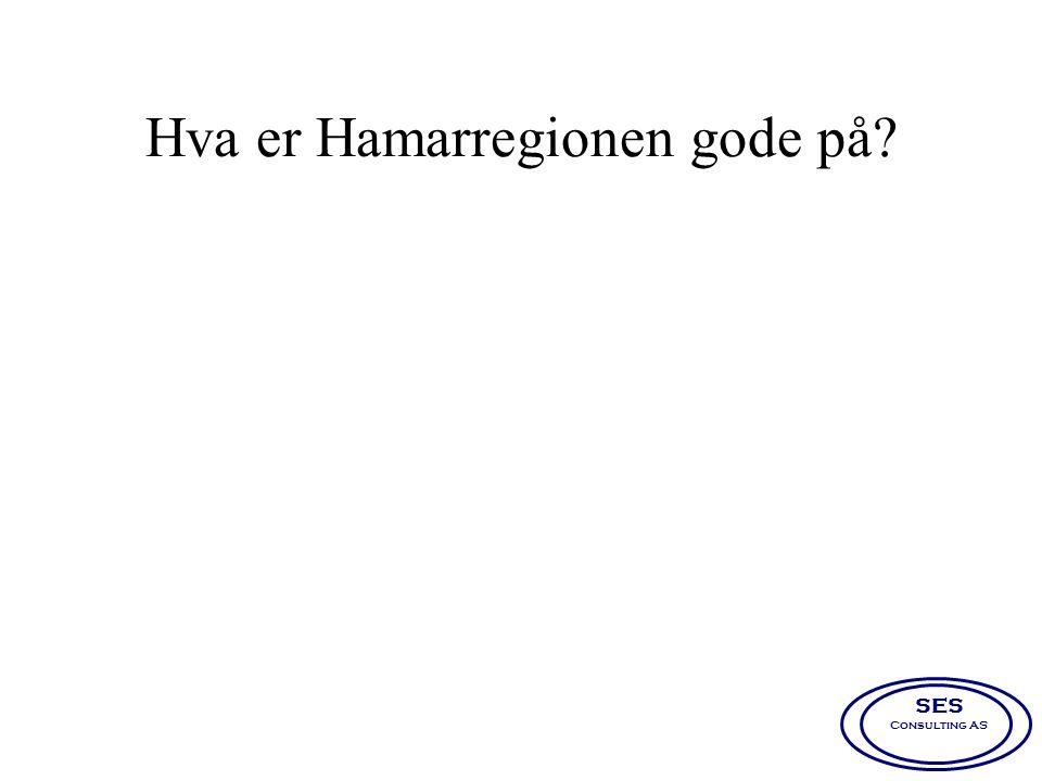 Hva er Hamarregionen gode på