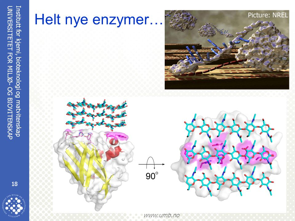 Helt nye enzymer………