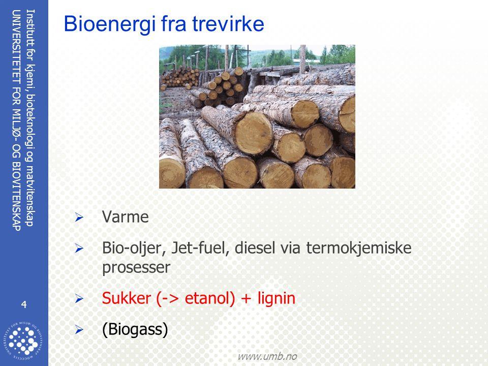 Bioenergi fra trevirke