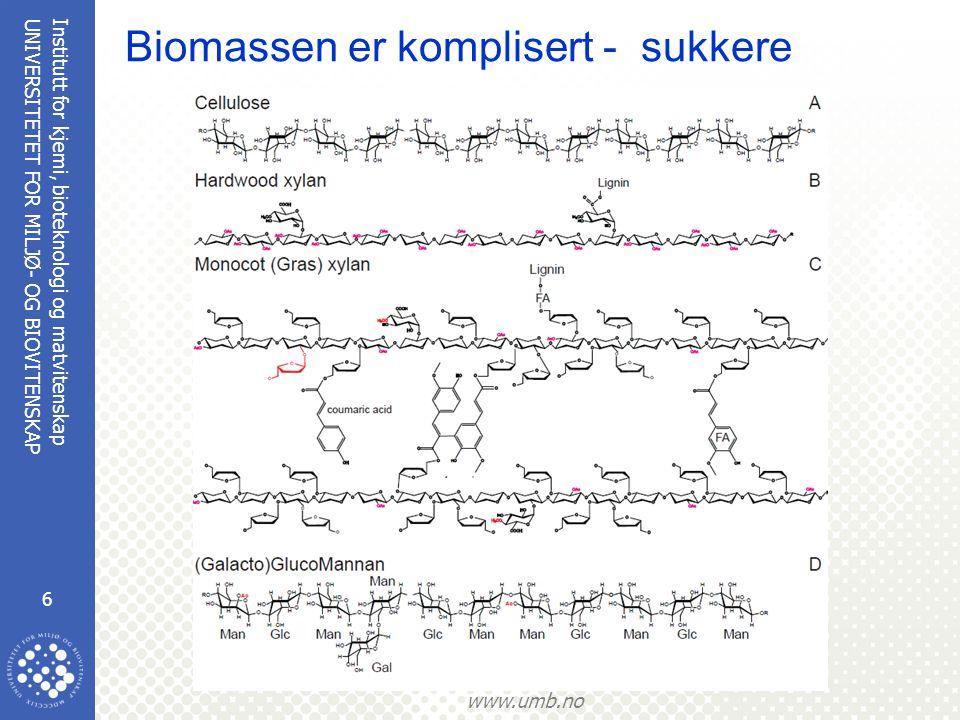 Biomassen er komplisert - sukkere