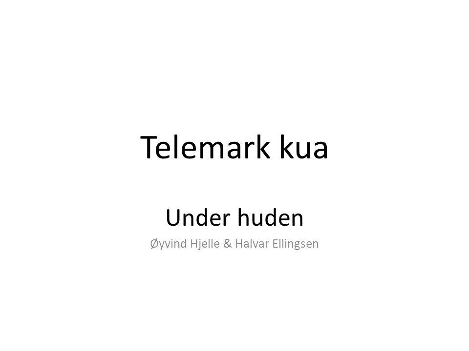 Under huden Øyvind Hjelle & Halvar Ellingsen
