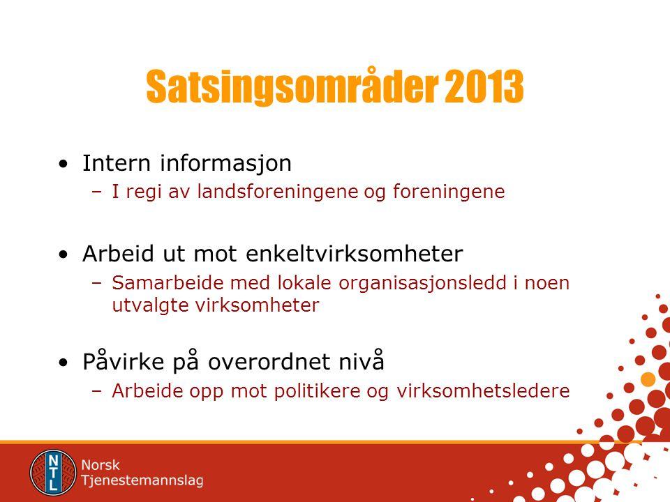 Satsingsområder 2013 Intern informasjon