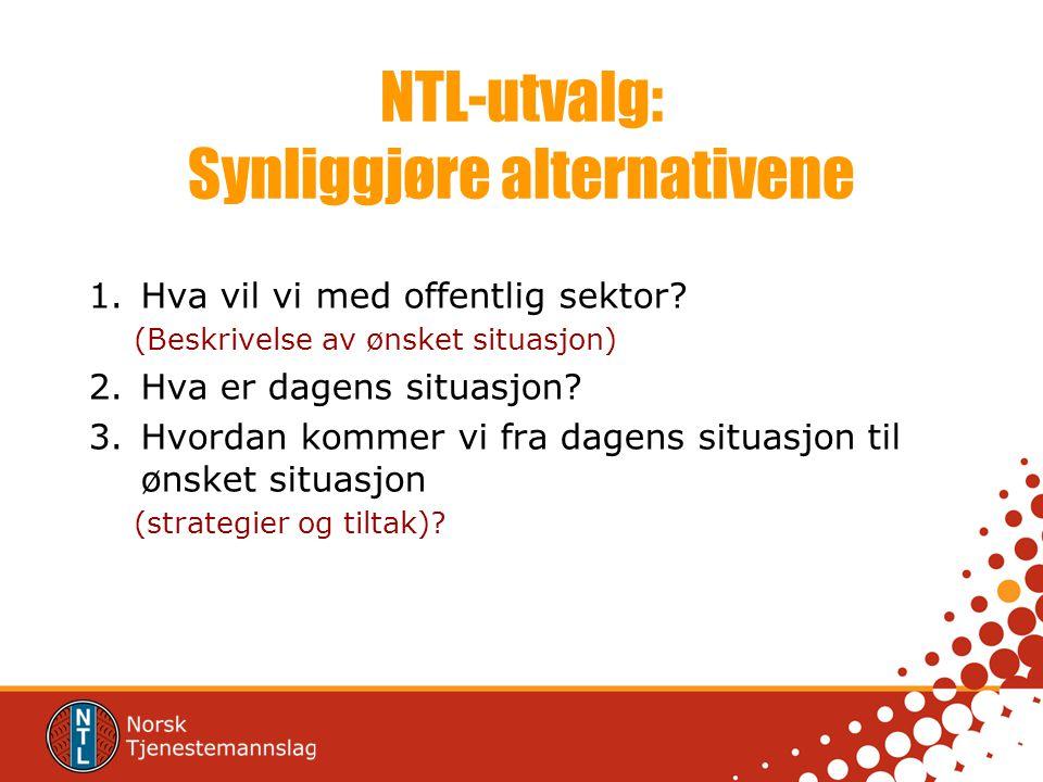 NTL-utvalg: Synliggjøre alternativene