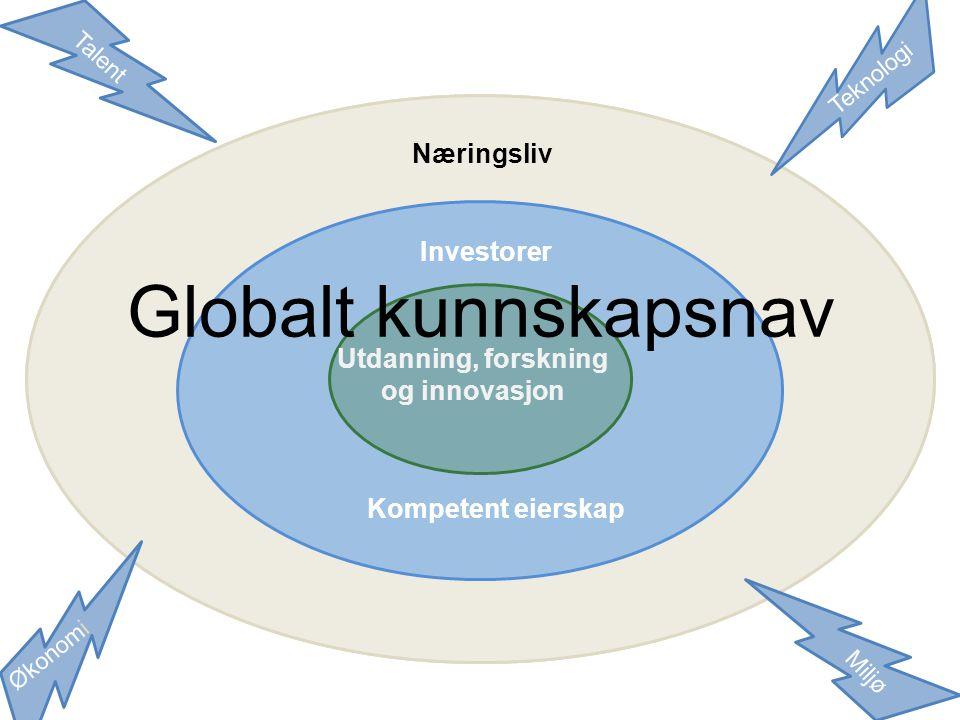 Globalt kunnskapsnav Næringsliv Investorer Investorer Utdanning