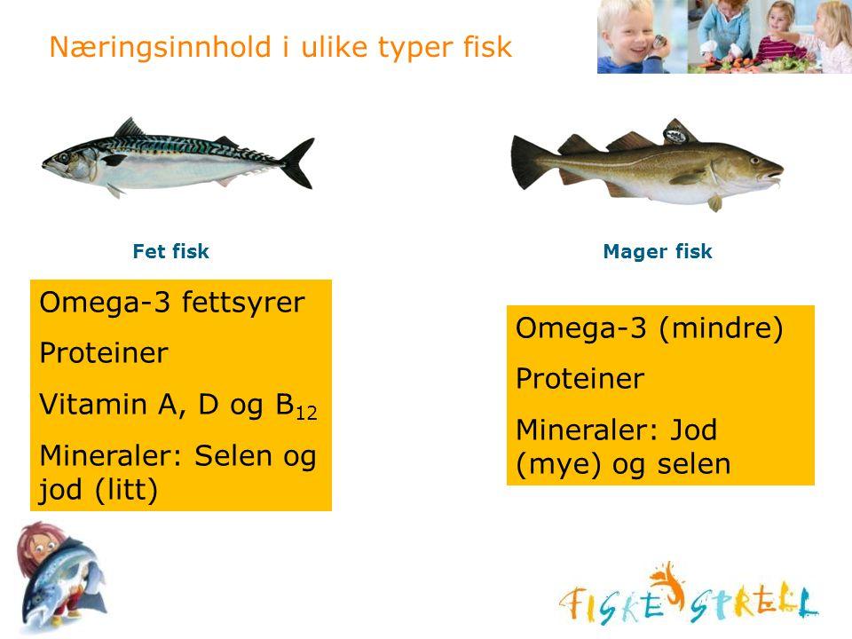 Næringsinnhold i ulike typer fisk