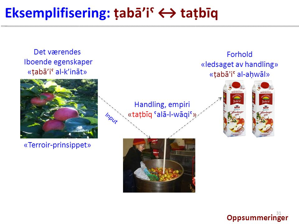Eksemplifisering: ṭabā'iˤ ↔ taṭbīq