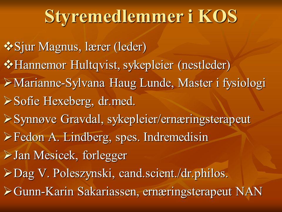 Styremedlemmer i KOS Sjur Magnus, lærer (leder)