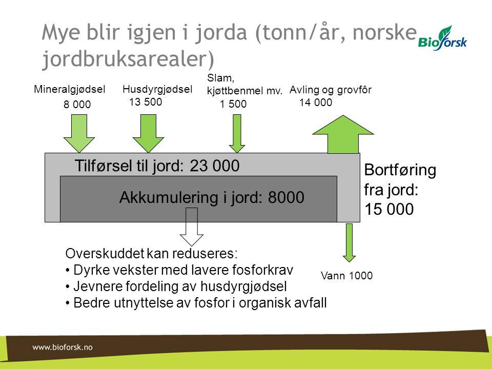 Mye blir igjen i jorda (tonn/år, norske jordbruksarealer)