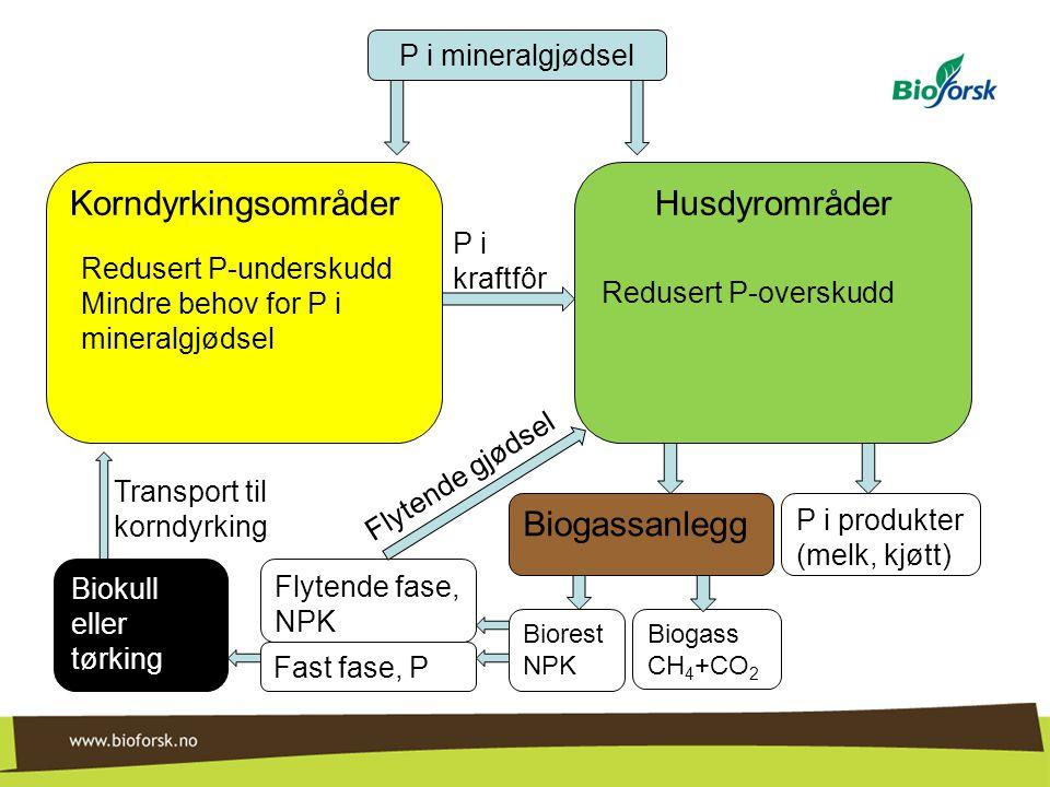 Korndyrkingsområder Husdyrområder Biogassanlegg P i mineralgjødsel