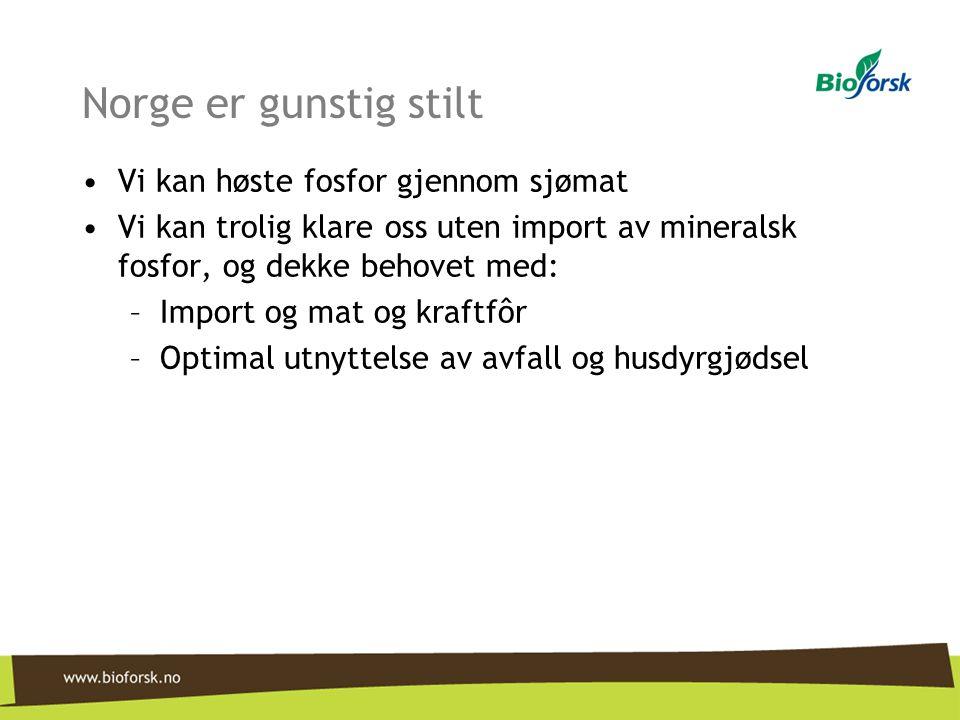 Norge er gunstig stilt Vi kan høste fosfor gjennom sjømat