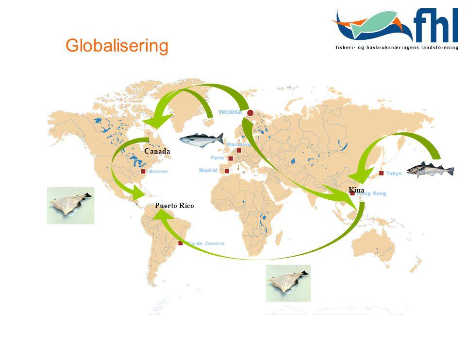 Globalisering Canada Kina Puerto Rico
