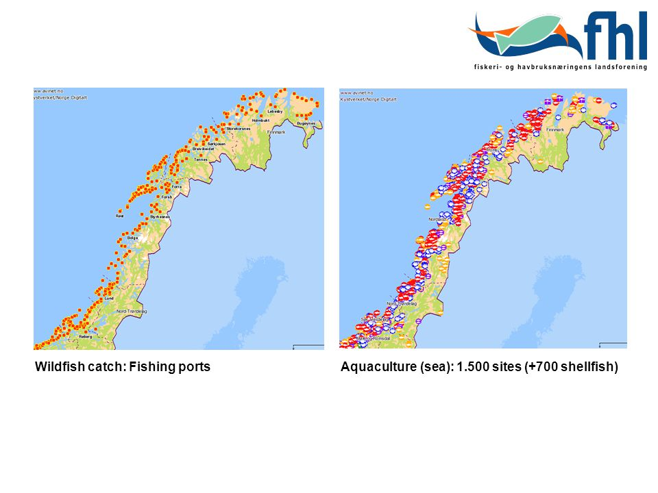 Wildfish catch: Fishing ports