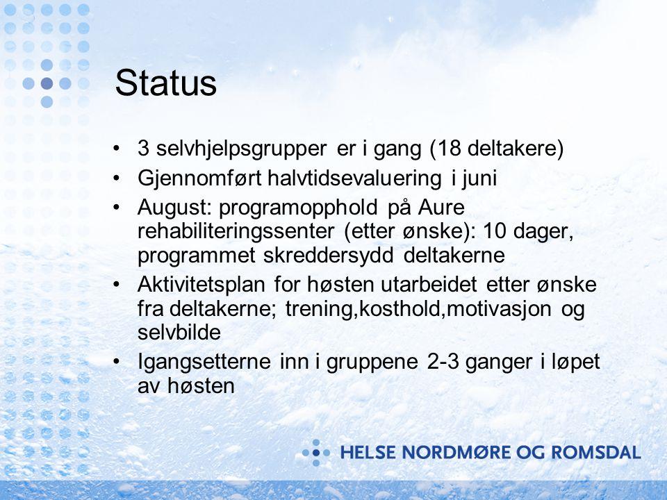 Status 3 selvhjelpsgrupper er i gang (18 deltakere)