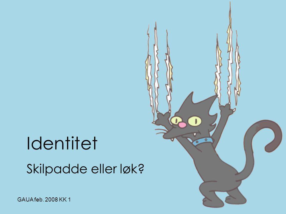 Identitet Skilpadde eller løk GAUA feb. 2008 KK 1