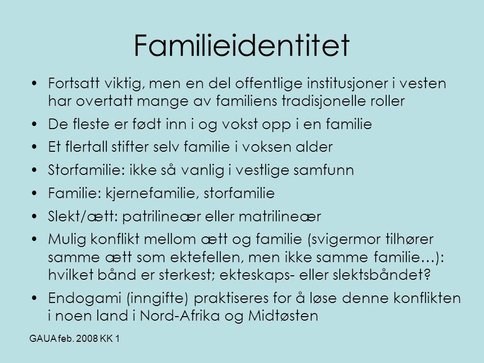 Familieidentitet Fortsatt viktig, men en del offentlige institusjoner i vesten har overtatt mange av familiens tradisjonelle roller.
