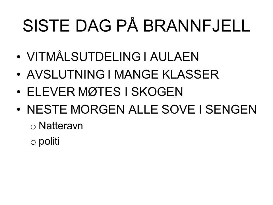 SISTE DAG PÅ BRANNFJELL