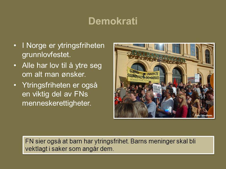 Demokrati I Norge er ytringsfriheten grunnlovfestet.