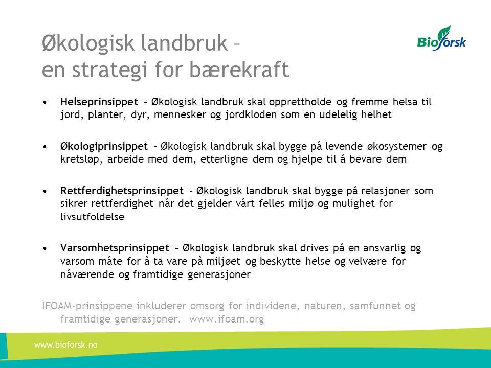 Økologisk landbruk – en strategi for bærekraft