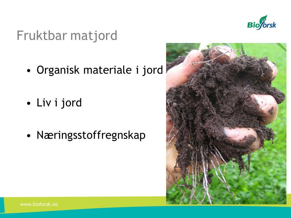 Fruktbar matjord Organisk materiale i jord Liv i jord