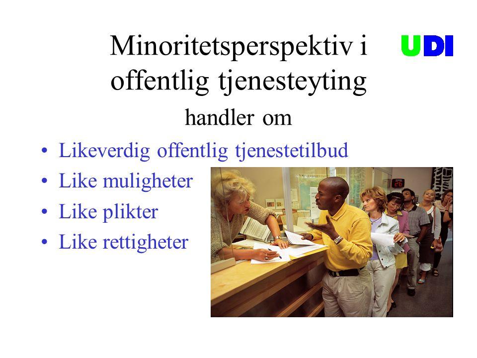 Minoritetsperspektiv i offentlig tjenesteyting handler om