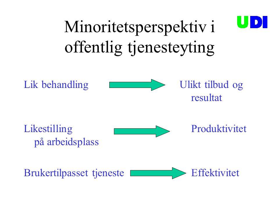 Minoritetsperspektiv i offentlig tjenesteyting
