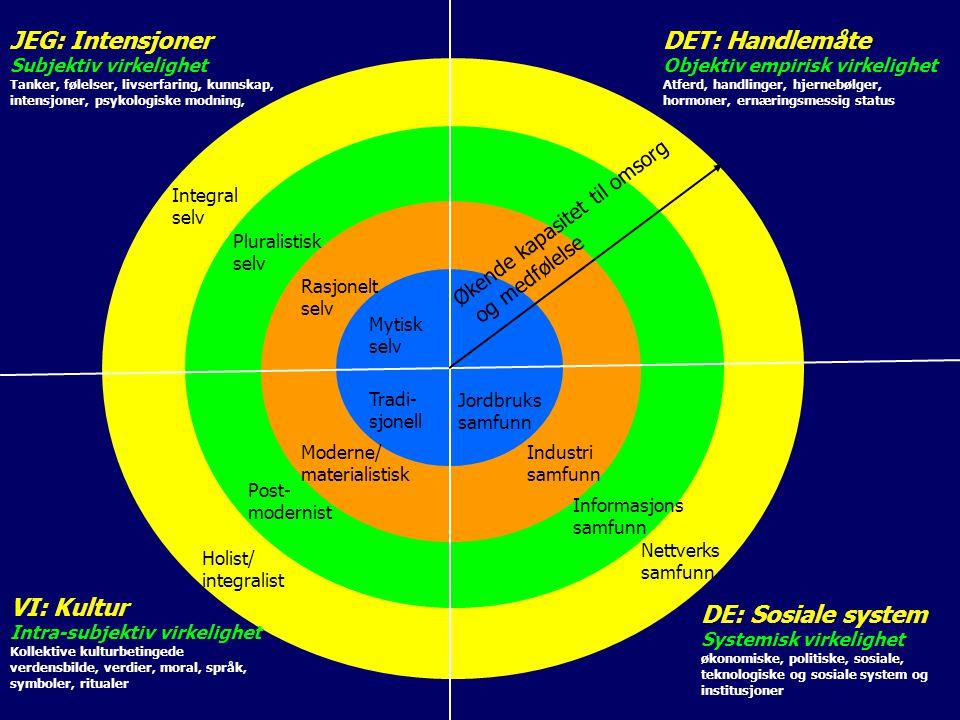 JEG: Intensjoner DET: Handlemåte VI: Kultur DE: Sosiale system