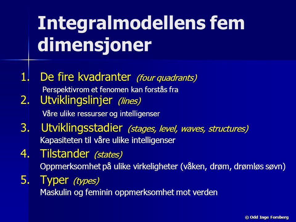 Integralmodellens fem dimensjoner
