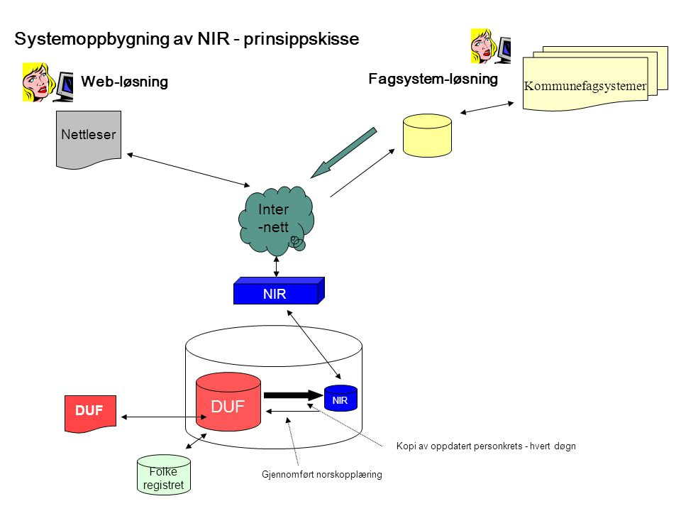 Systemoppbygning av NIR - prinsippskisse