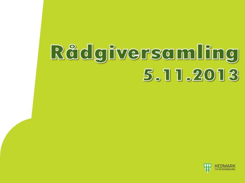 Rådgiversamling 5.11.2013