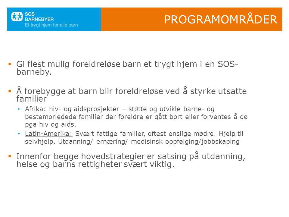 Programområder Gi flest mulig foreldreløse barn et trygt hjem i en SOS-barneby. Å forebygge at barn blir foreldreløse ved å styrke utsatte familier.