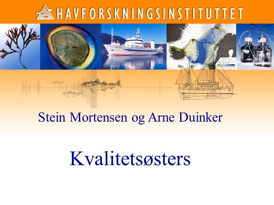 Stein Mortensen og Arne Duinker