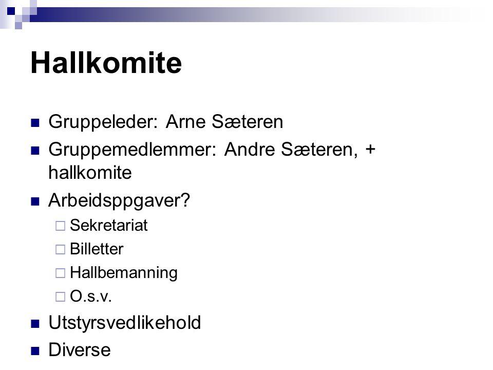 Hallkomite Gruppeleder: Arne Sæteren